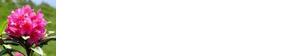 ristorante-alpino-logo-white